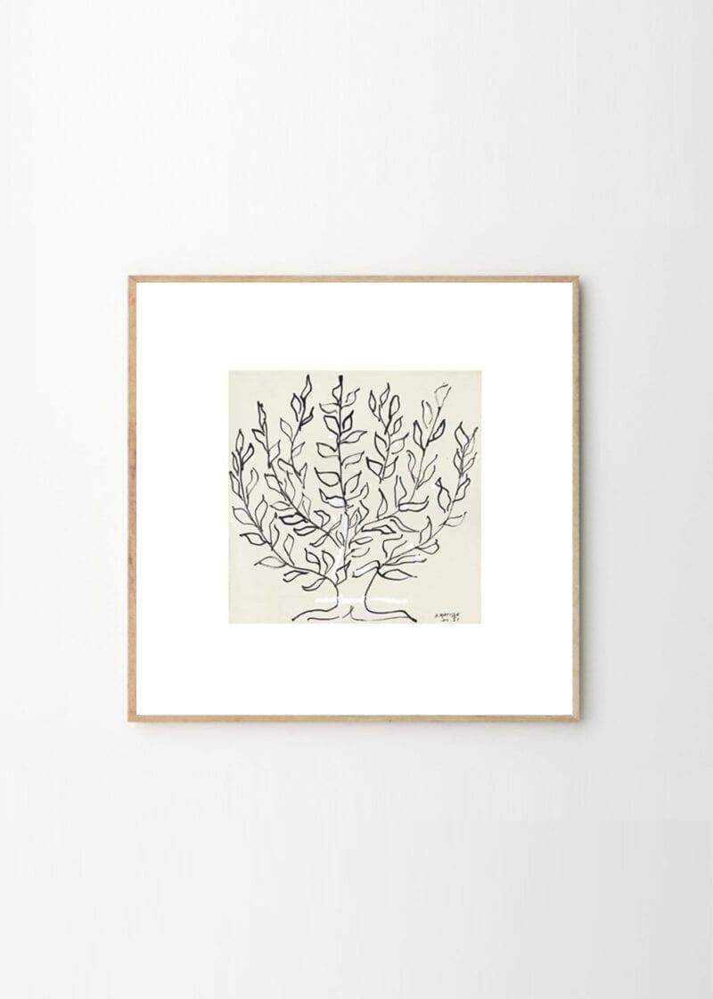 Rosenstiels - Henri Matisse, Le Platane